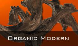 Organic Modern Design