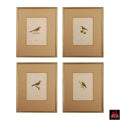 Antique Chromolithograph Bird Prints