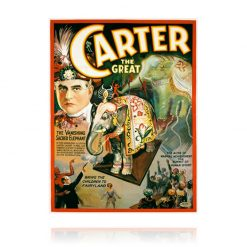 Carter The Great Vanishing Elephant