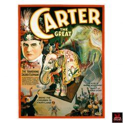 Carter The Great Vanishing Elephant